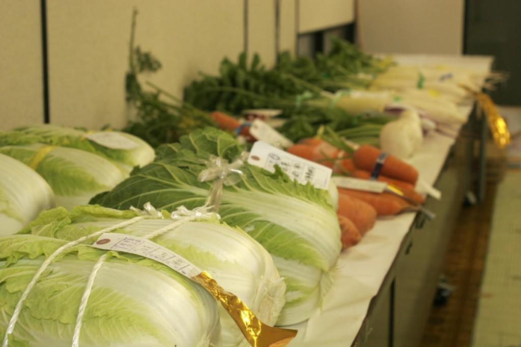 多種多様の野菜が並ぶ!